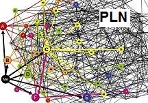 pln-mini